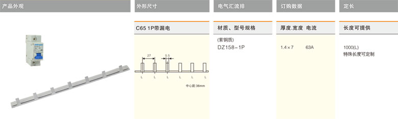 DZ158-2P 电气汇流排-上海圣约实业